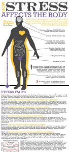 How Stress affects